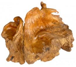 Natural Wood Root Eagle