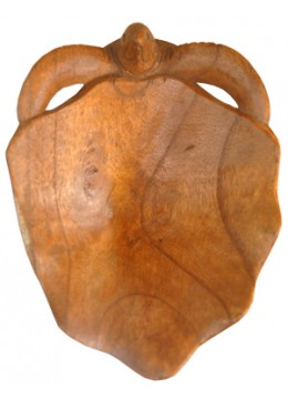 Wood Carving Astray Turtle