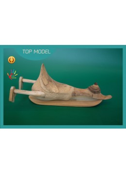 Best Selling Customized Natural Finishing Wood Duck