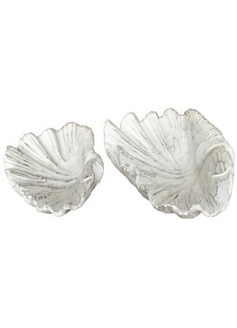 SeaSeashell set of 2 Decor