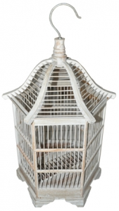 Spider Birdcage Bird House